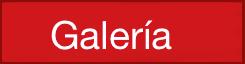 Galería TEDxQuito 2015